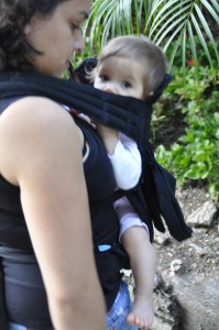 Modern Baby Product Guide: Infantino EcoSash Wrap & Tie Carrier