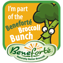 Beneforte Broccoli Bunch