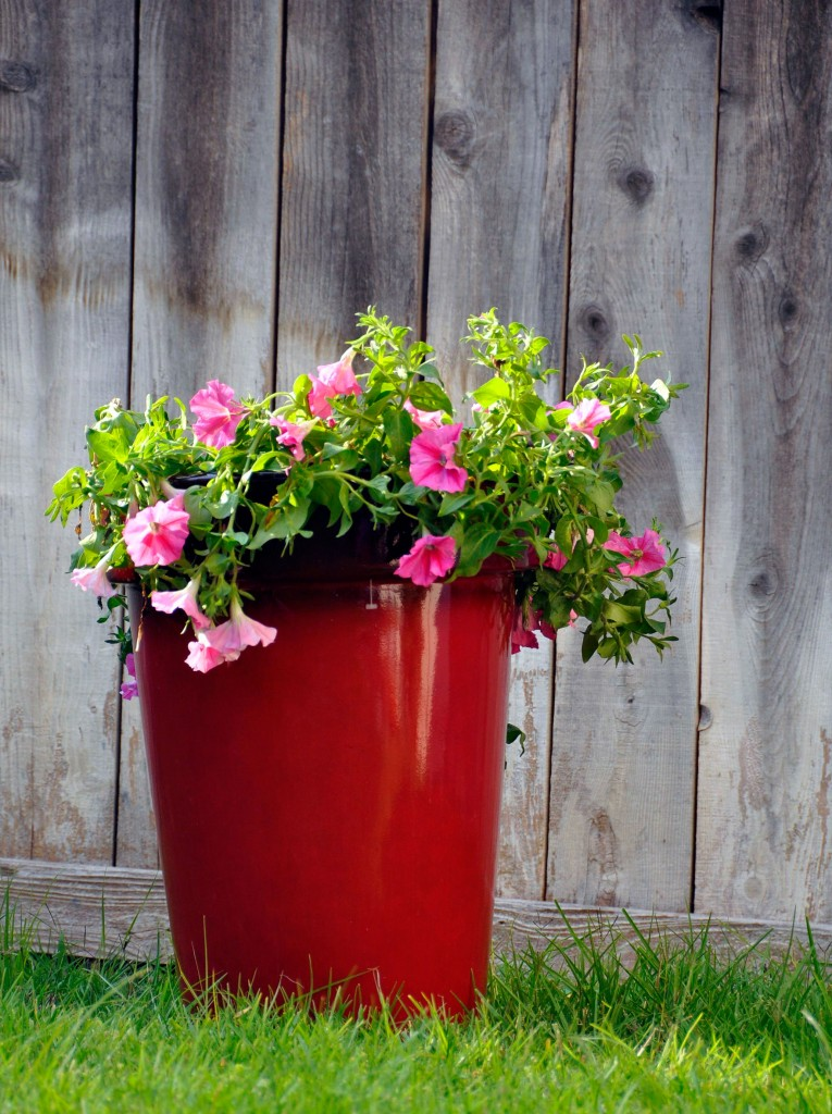 Diy Outdoor Planter From Better Homes And Gardens Rockin