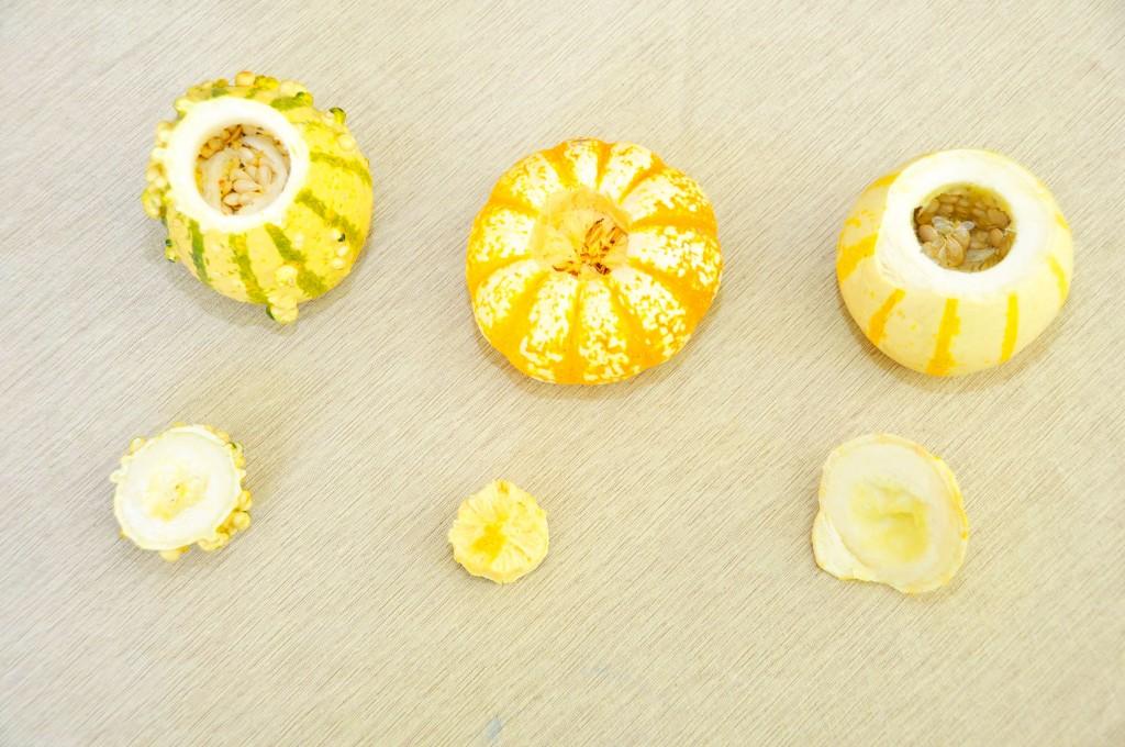 Gourds Craft