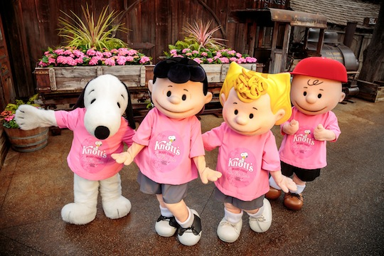 Knott's For The Cure Snoopy Lucy Sally Charlie