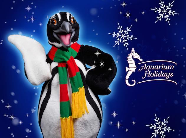 Penguin Holiday - Aquarium of the Pacific