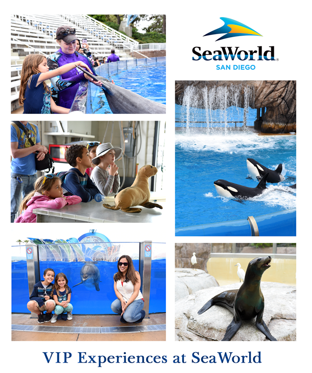 VIP Experiences at SeaWorld