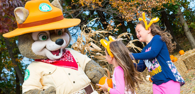 Howl O Ween Deal at Great Wolf Lodge