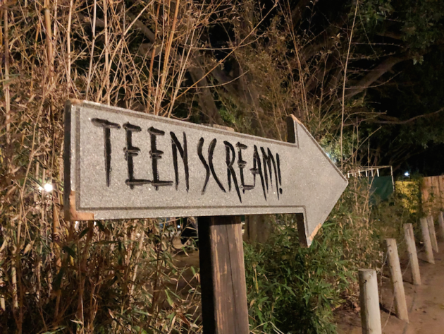 Teen Scream