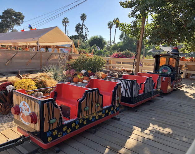 Miniature Train at Zoomars