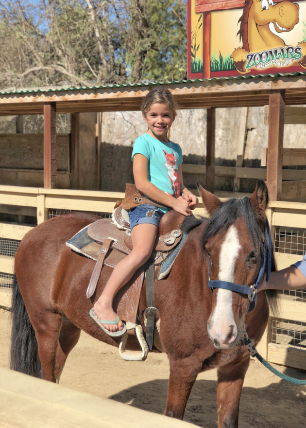 Pony Ride at Zoomars