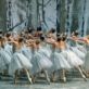 American Ballet Theatre Performs The Nutcracker at the Segerstrom Center for the Arts