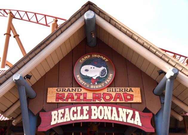 Beagle Bonanza
