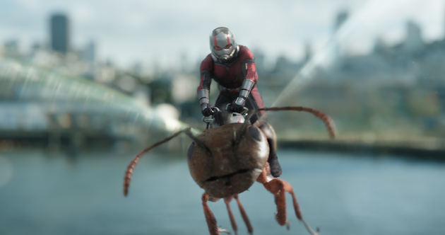 Ant-Man and The Wasp Still
