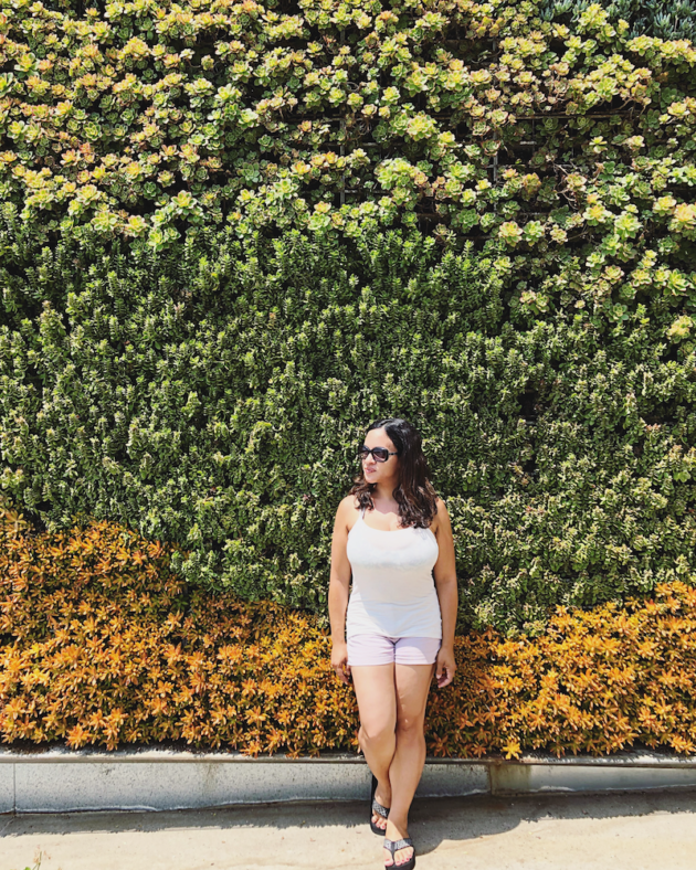Living Wall at Springhill Suites Oceanside