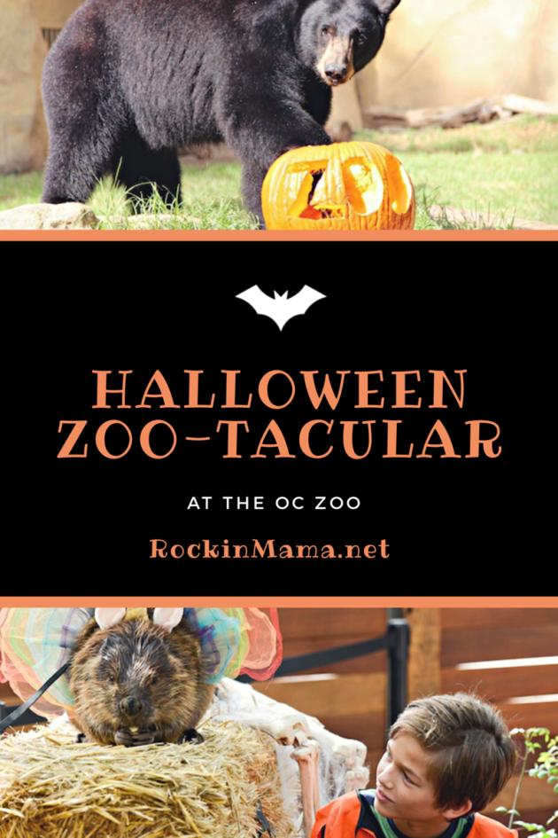 OC Zoo Halloween Zoo-Tacular
