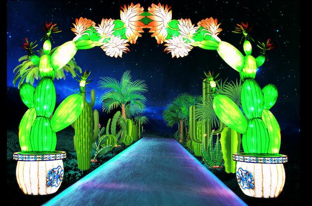 Chinese Lantern Festival 2019