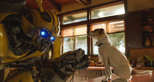 Bumblebee and Dog