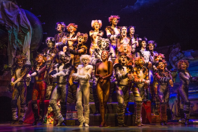 The Company of CATS on Broadway