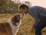 Dennis Quaid A Dogs Journey