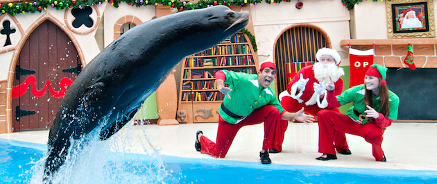 Clyde and Seamores Christmas Special SeaWorld