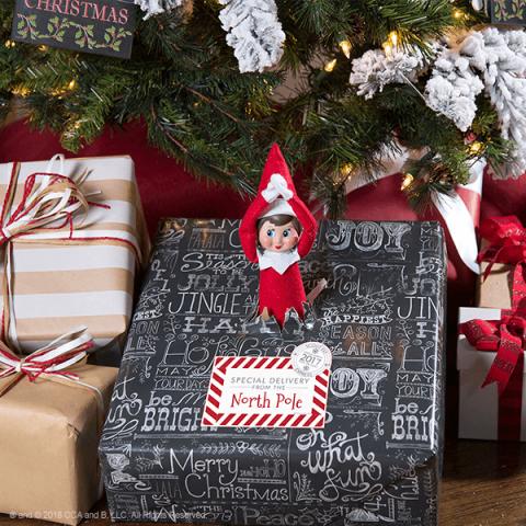 Elf Special Delivery