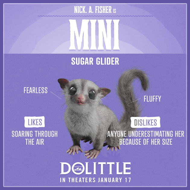 Dolittle Mini