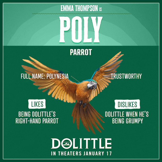 Dolittle Poly