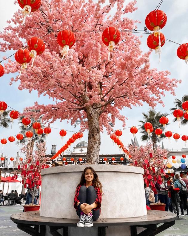 Lunar New Year Wishing Trees