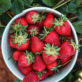 U-Pick Strawberries at Kenny's Strawberry Farm