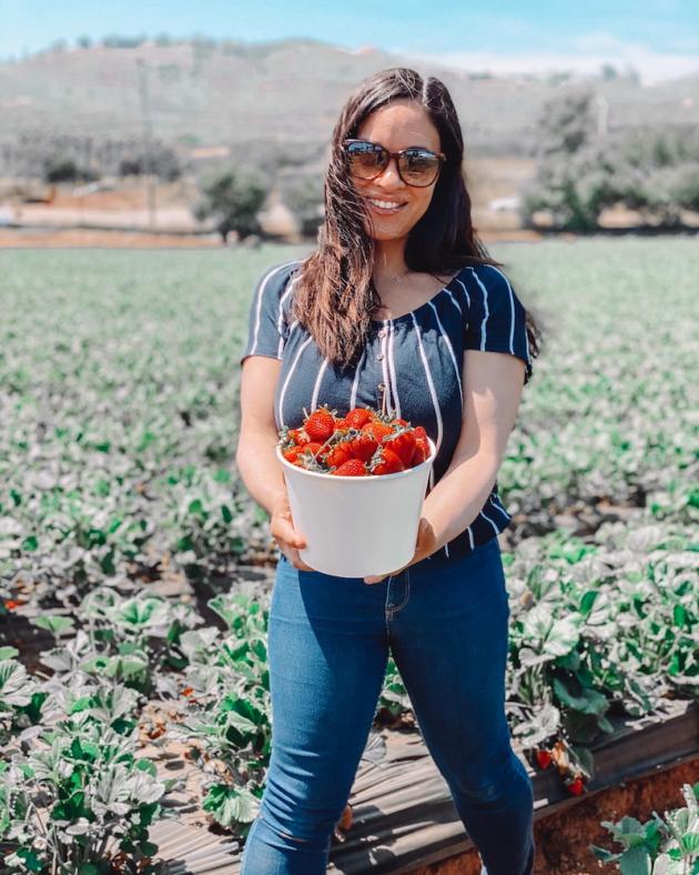 Kennys Strawberry Farm
